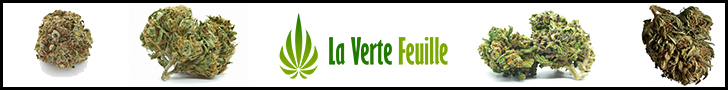 Visit the CBD shop La Verte Feuille